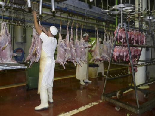 Imagen del matadero de Manacor.