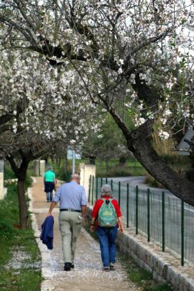 Consell debatirá este jueves la aprobación de la Ley de Caminos Públicos y Rutas de Interés Excursionista.