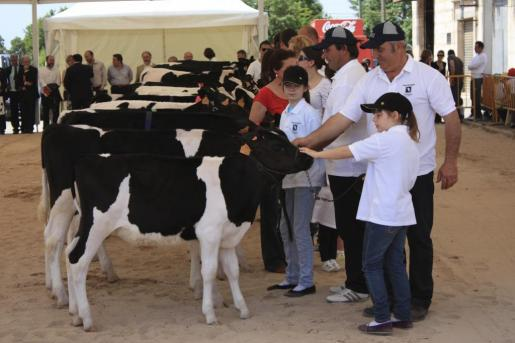 La Fira de Maig convierte a Campos en la capital ganadera de la comarca.