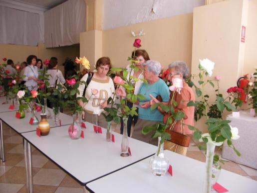 En el marco de la Fira de Maig se puede ver una interesante exposición floral.