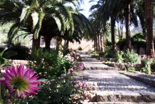 Los Jardins d'Alfàbia se encuentran en Bunyola, en el kilómetro 17 de la carretera de Palma a Sóller, dentro del conjunto de la sierra de Alfabia.