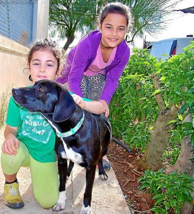 Nuria Franco (a la derecha) junto a su hermana, Julia, en la perrera de Llucmajor.