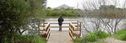 S'Albufera es la zona húmeda más extensa de Baleares.