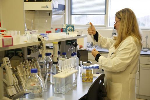 Epidemiología ha detectado ya 47 casos de hepatitis A.