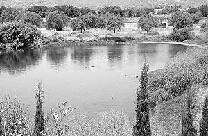 Imagen de archivo de las lagunas de Can Figuera de Binissalem.