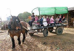 En la visita, los niños cuidan el huerto, realizan talleres típicos y dan de comer a los animales. Foto: JAUME MOREY