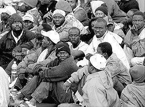 Fin de viaje para los 227 inmigrantes que intentaron llegar a costas españolas.<