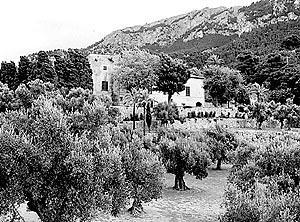 La Serra de Tramuntana será objeto de diversas figuras y niveles de protección establecidos por ley.