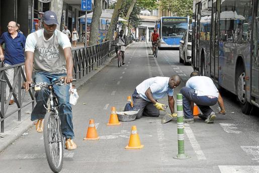 Palma desmantelamiento carril bici avenidas fotos teresa ayuga