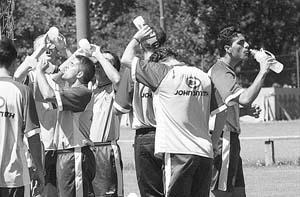 Los jugadores del Real Mallorca quieren estar en la Champions. Foto: JOAN TORRES.