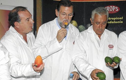 Rajoy recuperará, en caso de que gobierne, el Ministerio de Agricultura, «que estaría más tiempo en Bruselas que en Madrid».