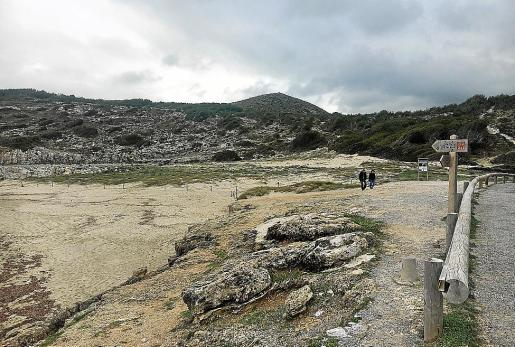El Consell y Costas han realizado mejoras para proteger el sistema dunar de Cala Mitjana.