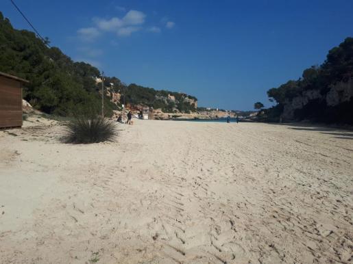 La duna destruida se ubicaba a unos 60 metros del mar en la zona norte de la playa.