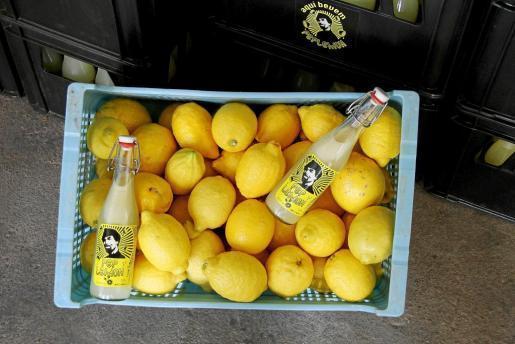 Imagen captada en 2014 durante la presentación del refresco Pep Lemon en Palma.