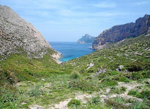 El Supremo concluyó en 2001 que existía una servidumbre de paso en todos los caminos de la Serra que conectan con el mar, como el de Cala Bóquer, pero a la vez advertía que el uso se debía regular siguiendo criterios ambientales para no perjudicar la biodiversidad.