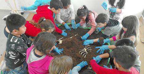 Imagen del taller de arqueología realizado por alumnos del CEIP Sa Graduada.