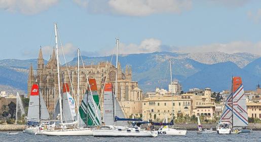 La flota que compite en la Global Ocean Race durante su salida desde Ciutat y con la Catedral de fondo.