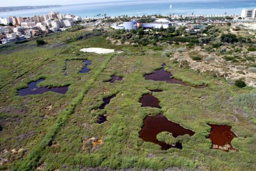Vista aérea del humedal de ses Fontanelles.