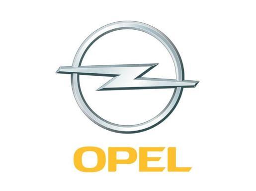 El concesionario es distribuidor oficial Opel.