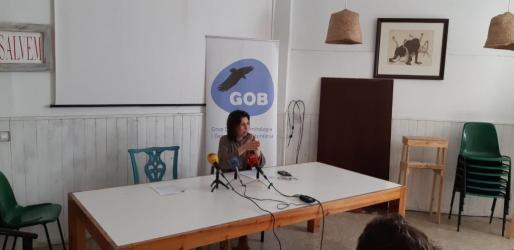 El GOB critica que el Consell del Pacte siga ejecutando los proyectos de carreteras del anterior plan.