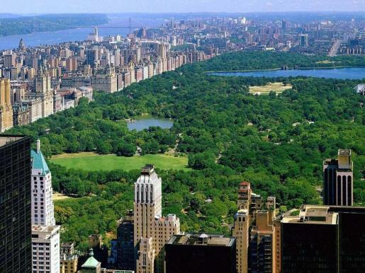 Imagen del icónico Central Park de Nueva York.