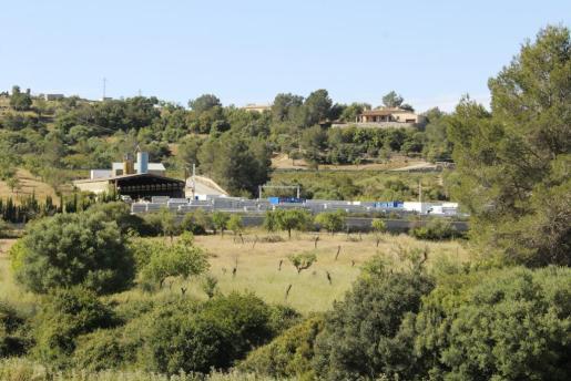 Imágenes de 2017, cuando el programa se instaló por primera vez en Sant Llorenç.