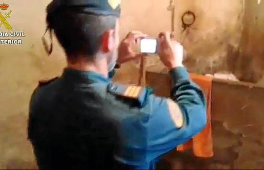 El Seprona de la Guardia Civil intervino tras una denuncia por el estado de los cerdos.