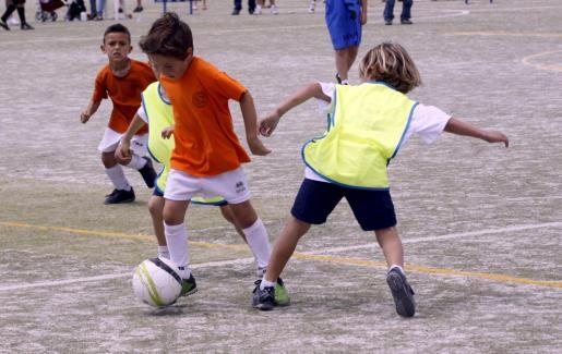 Imagen de unas jornadas de deporte base en el polideportivo de Sant Ferrán.