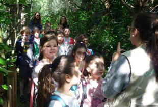 Alumnes de 1er i 2on de primaria del Ceip Jaime I de Palmanova varen visitar Natura Parc