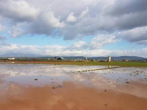 Imagen del pla de Sant Jordi días después de las fuertes lluvias que cayeron sobre la isla.