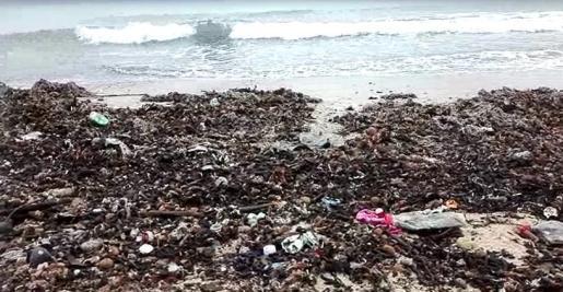 Imagen de suciedad en una playa de Palma.