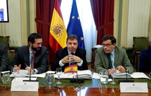 El ministro de Agricultura, Pesca y Alimentación, Luis Planas, en el centro, durante una reunión del Consejo Consultivo de Política Agrícola.