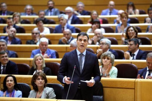 El presidente del Gobierno Pedro Sánchez, durante su intervención en la sesión del pleno del Senado.