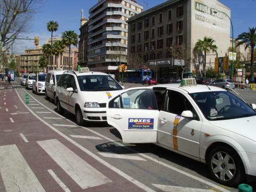 Imagen de una de las paradas de taxi de Palma.