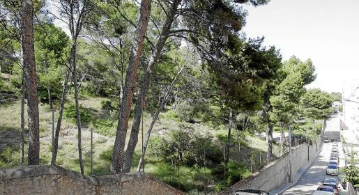 La constructora quería edificar en torno a 200 viviendas en el Turó de Can Tàpera.