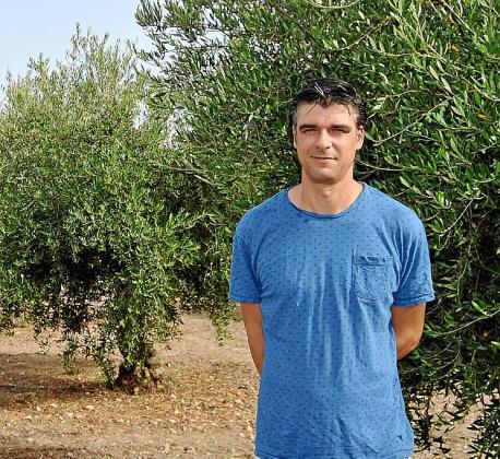 Sebastià Solivelles, en el olivar de la finca Solivelles.