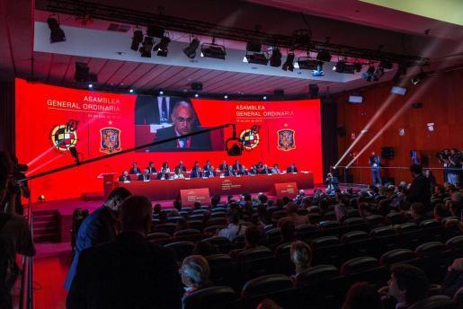 Vista general de la asamblea de la Real Federación Española de Fútbol (RFEF), que se celebra en la Ciudad del Fútbol de Las Rozas.