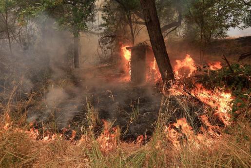 Vista general del fuego que está arrasando el norte de California.