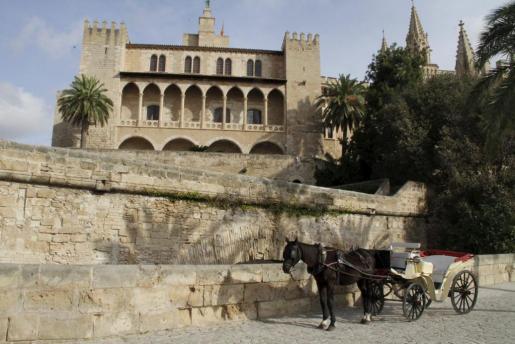Imagen de una galera en Palma.