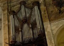 Construido por el suizo Ludwing Scherrer en 1804, con una fachada diseñada por el cura Miguel Salvá, en 1984 el órgano fue restaurado por el alemán Gerhard Grenzing.