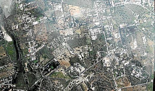 Imagen de las casas ilegales de Son Anglada.