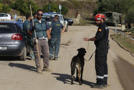 Perros adiestrados de la Guardia Civil han colaborado en las tareas de búsqueda de Artur, el niño de cinco años desaparecido tras la riada del martes en Mallorca