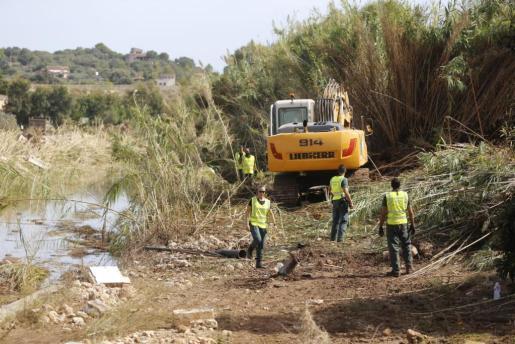 El rastreo se lleva a cabo en varias zonas del torrente de Ses Planes: el tramo próximo a Son Carrió, donde se encontraron efectos personales del pequeño, y el área de la desembocadura del cauce en S'Illot.