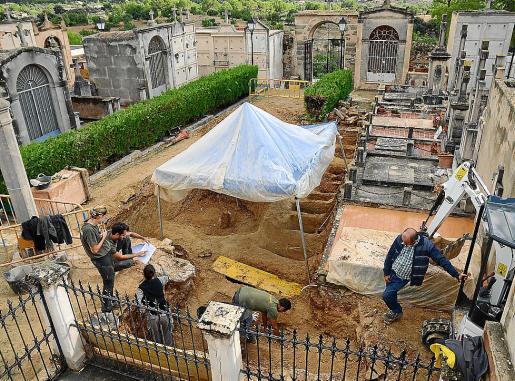 Imagen de los trabajos de excavación de la fosa común de Calvià.