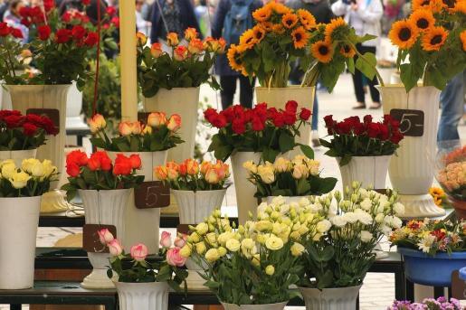 Floristerías y centros de jardinería han mostrado su preocupación ante la posibilidad de ver sus ventas afectadas por el mal tiempo.