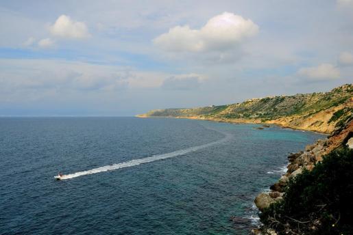 La recogida se ha llevado a cabo en los deltas de Maioris y la reserva marina de Badia Blava.