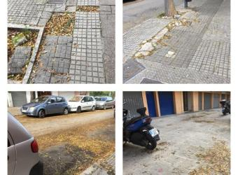Falta de mantenimiento y limpieza en Son Oliva