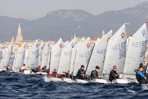 Imagen de una de las regatas del Trofeo Ciutat de Palma de vela de 2017.