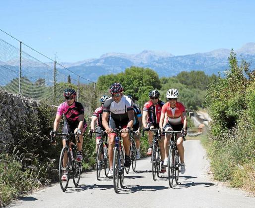 Los cicloturistas y equipos profesionales de ciclismo llegan a Mallorca entre diciembre y junio, seis meses de actividad en los que las carreteras y rutas cicloturistas de la Isla registran una presencia masiva de deportistas.