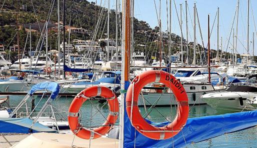 En los últimos años se ha detectado una mayor presencia de embarcaciones más grandes.